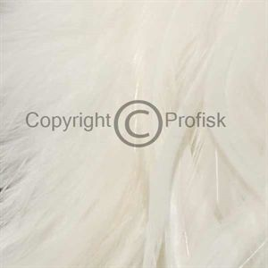 Schlappen feathers L White
