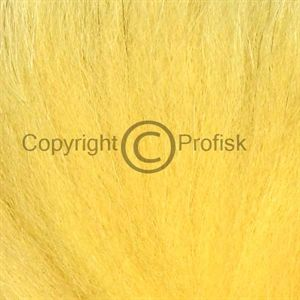 Arctic Fox, tail hair Golden