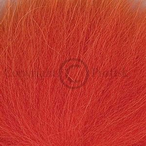 Arctic Fox, tail Hot orange